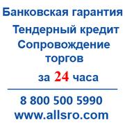 Банковская гарантия по госконтракту для Архангельска